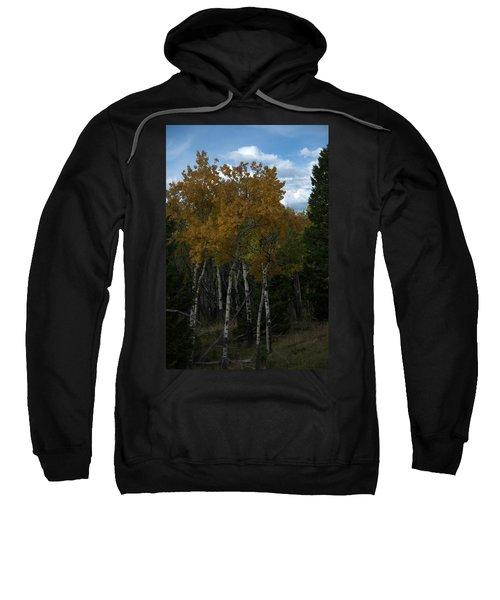 Quaking Aspen Sweatshirt