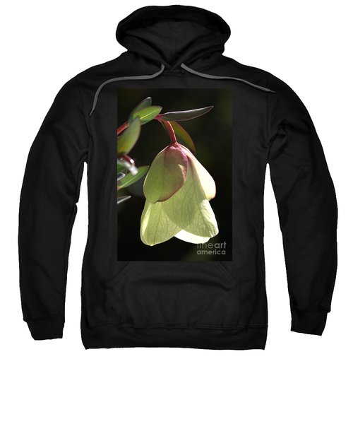 Qualup Bell Flower  Sweatshirt