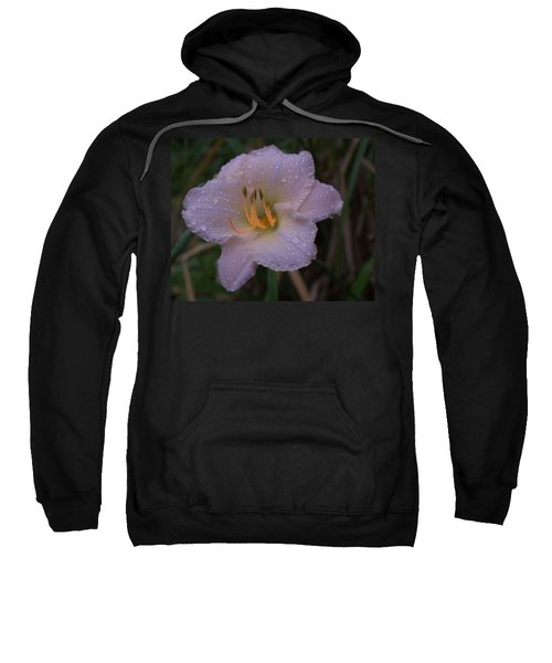 Rain Daylilly 2 Sweatshirt