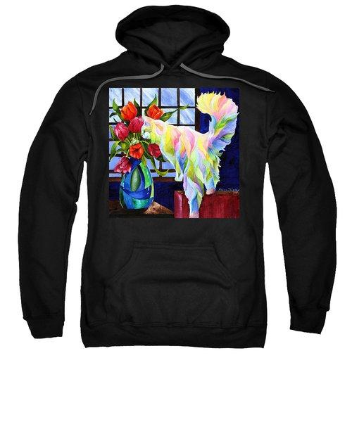 Rainbow Connection Sweatshirt