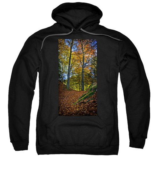 Red Carpet In Reelig Glen During Autumn Sweatshirt