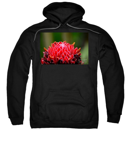 Red Torch Ginger Flower Head From Tropics Singapore Sweatshirt