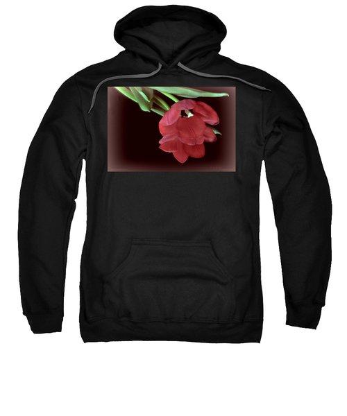 Red Tulip On Burgundy Sweatshirt
