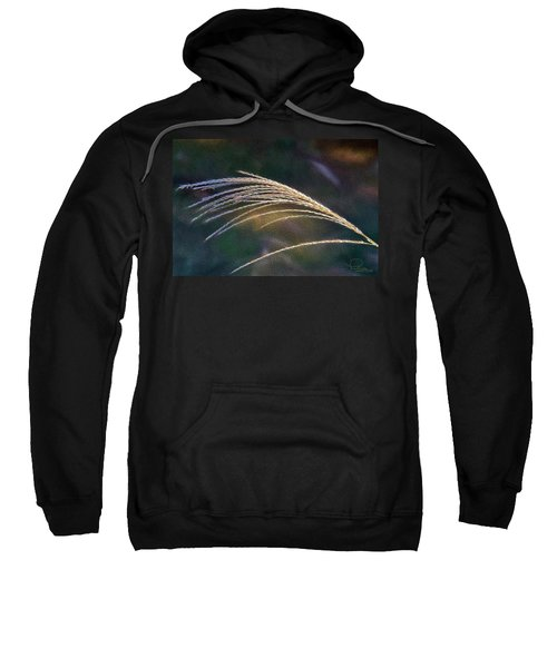 Reed Grass Sweatshirt
