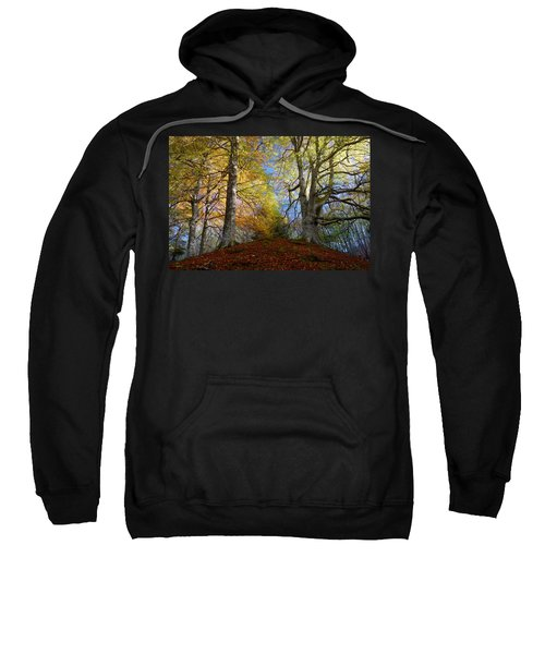 Reelig Forest  Sweatshirt