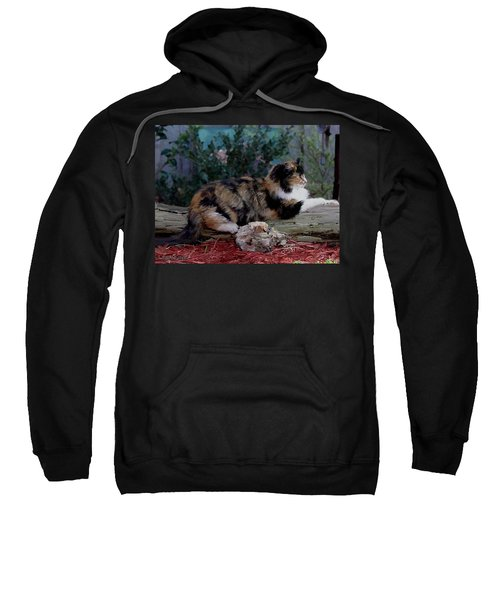 Resting Calico Cat Sweatshirt