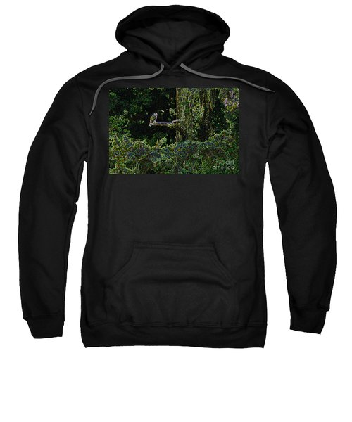 Sweatshirt featuring the digital art River Bird Of Prey by Kim Pate