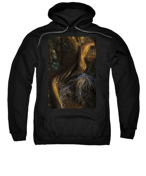 Tree Root Sweatshirt