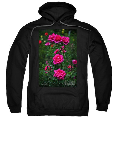 Roses In The Garden Sweatshirt