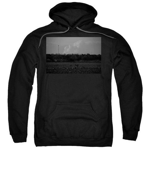 Sand Hill Cranes With Nebraska Thunderstorm Sweatshirt