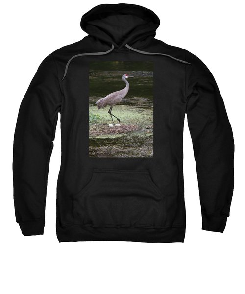 Sandhill Crane And Eggs Sweatshirt