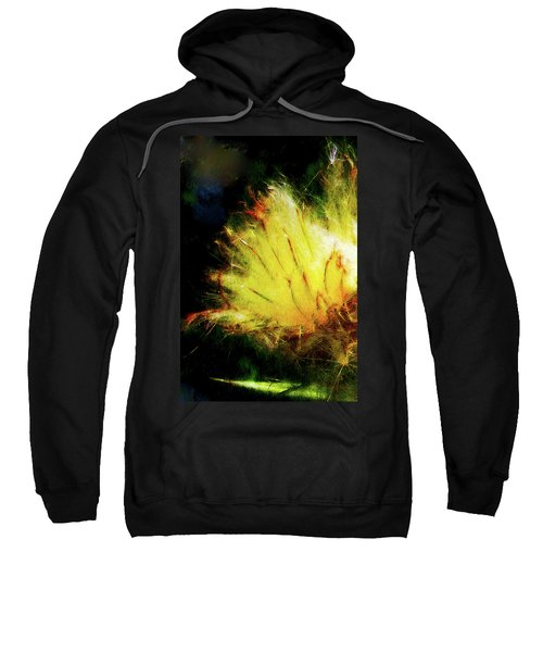Seedburst Sweatshirt