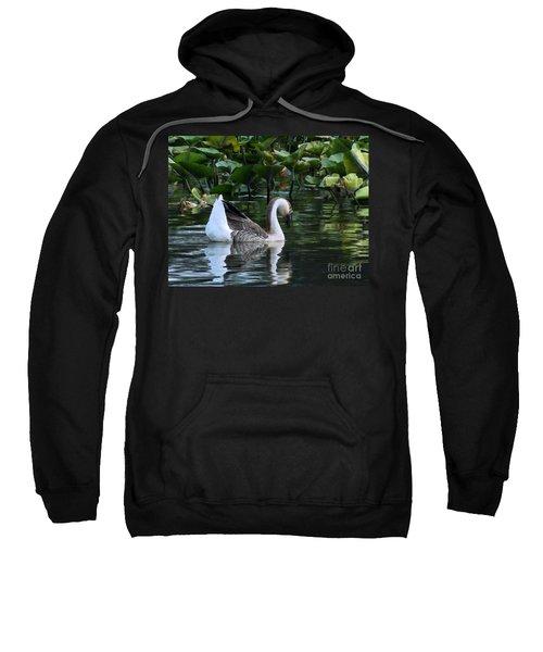 Serenity Swim Sweatshirt