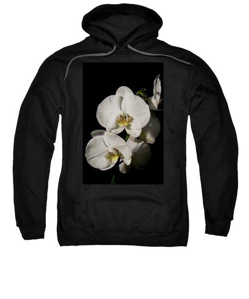 Shadowy Orchids Sweatshirt
