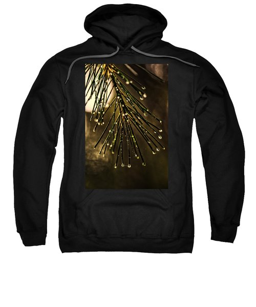 Shelter From The Rain Sweatshirt
