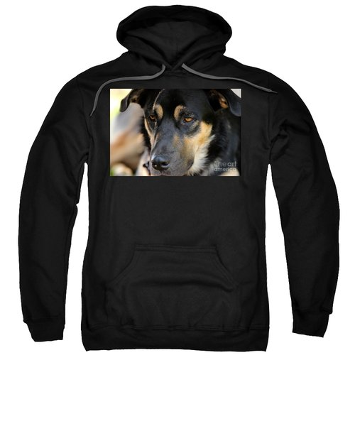Shepherd Face Sweatshirt