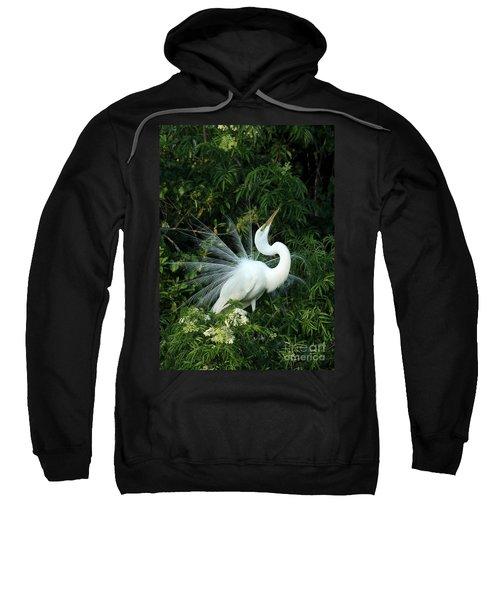 Showy Great White Egret Sweatshirt