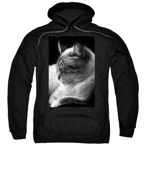 Silver Lynx Point Sweatshirt