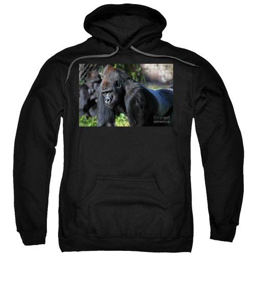 Silverback Gorilla 5d27057 Sweatshirt