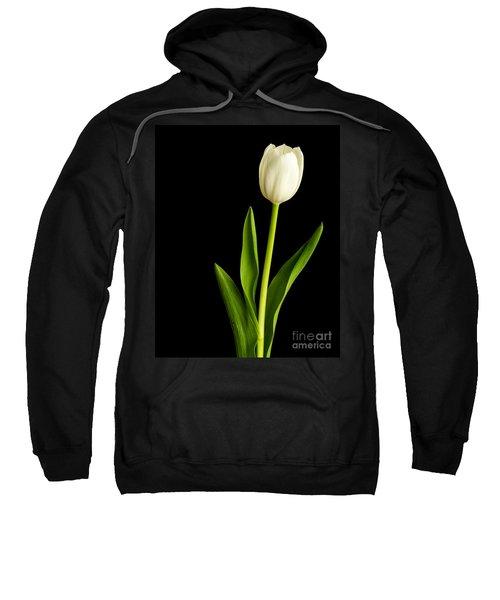 Single White Tulip Over Black Sweatshirt