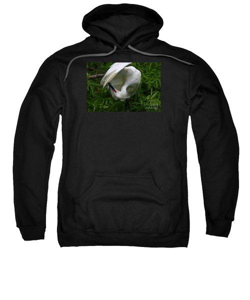 Snowy Egret Preening Sweatshirt