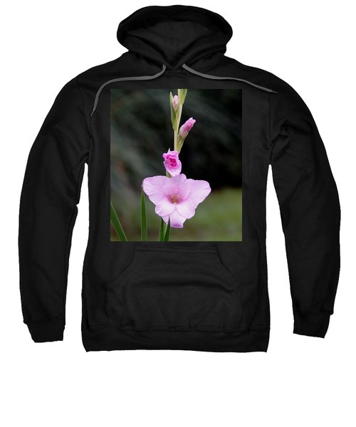 Sweatshirt featuring the photograph Soft Pink Glad by Kim Pate