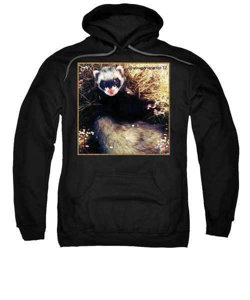 Sometimes We Like To Roll In The Straw #ferrets #pets Sweatshirt