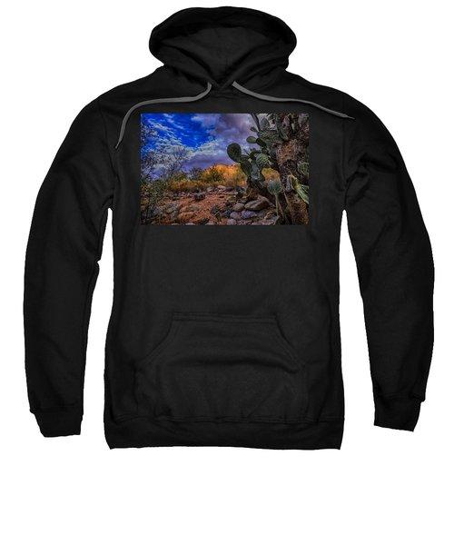 Sweatshirt featuring the photograph Sonoran Desert 54 by Mark Myhaver