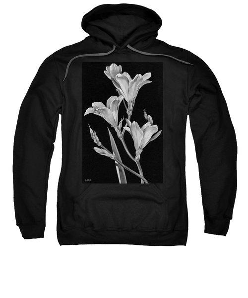 Sparaxis Flowers Sweatshirt