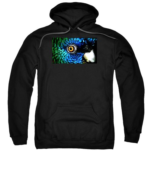 Speaking Eye  Sweatshirt