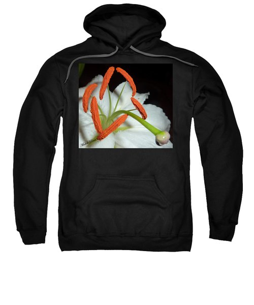 The Power 3 Sweatshirt