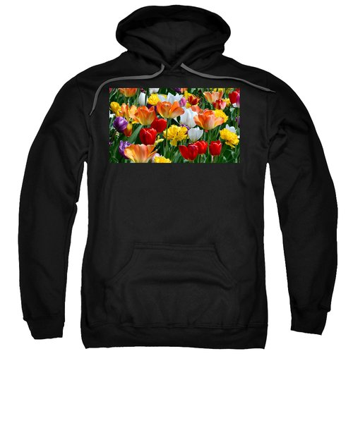 Splash Of Spring Sweatshirt