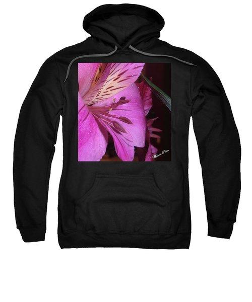 Splendid Beauty Sweatshirt