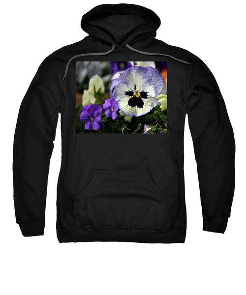 Spring Pansy Flower Sweatshirt