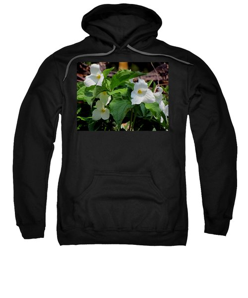 Springtime Trillium Sweatshirt