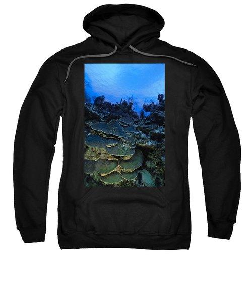 Steps Of The Sea Sweatshirt