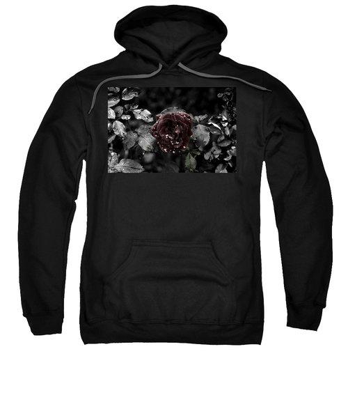 ...still A Rose Sweatshirt
