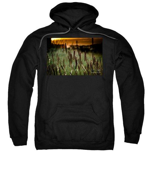 Summer Light Sweatshirt