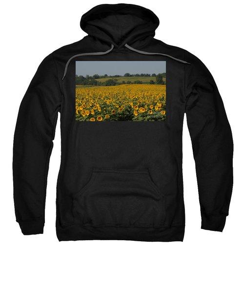 Sun Flower Sea Sweatshirt