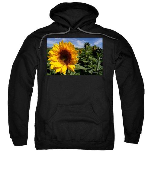 Sunflower Glow Sweatshirt