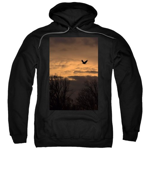 Sunset Eagle Sweatshirt