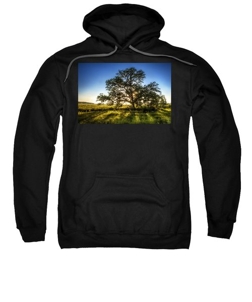 Sunset Oak Sweatshirt