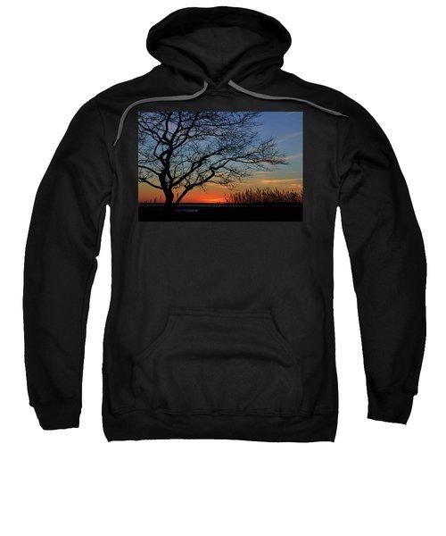 Sunset Tree In Ocean City Md Sweatshirt