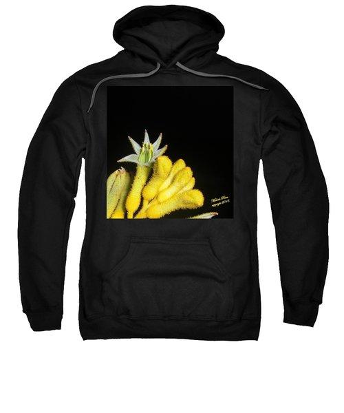 Surprise Sweatshirt