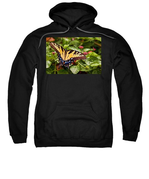 Swallowtail Beauty Sweatshirt