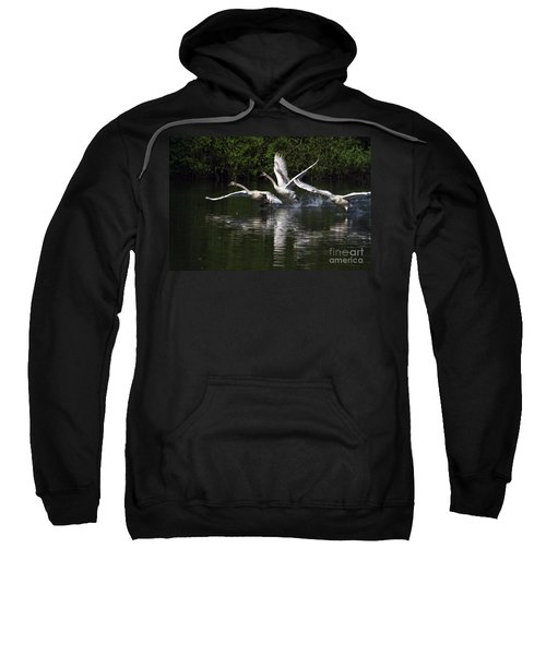 Swan Take-off Sweatshirt
