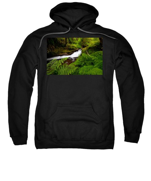 Sweet Creek Ferns Sweatshirt