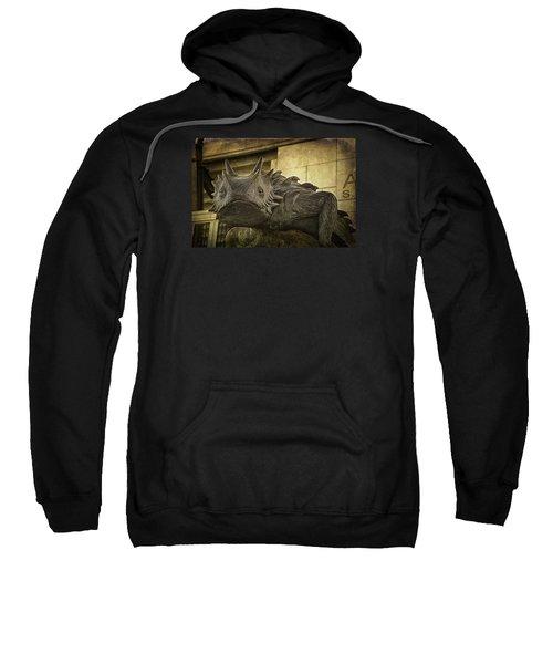 Tcu Horned Frog Sweatshirt