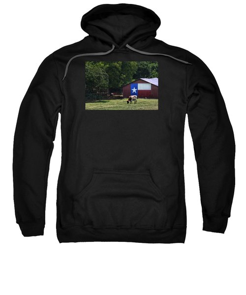 Texas Longhorn Grazing Sweatshirt