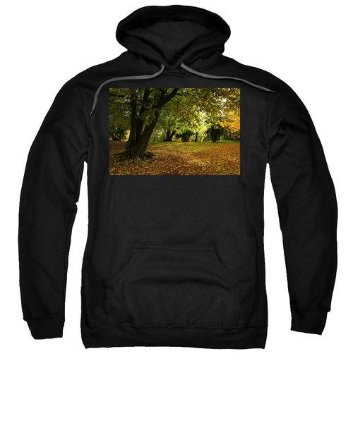 The Beauty Of Autumn Sweatshirt